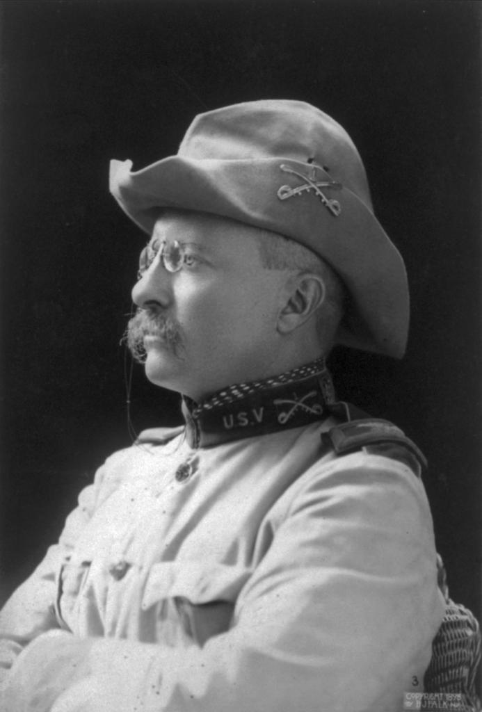 Theodore Roosevelt 1898